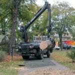 Rationelles Stammholz verladen ist kein Problem.
